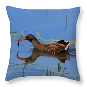 Water Rail With Fish Throw Pillow
