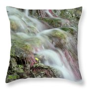 Water Spring Scene Throw Pillow