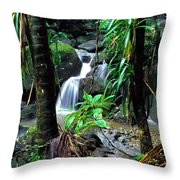 Waterfall El Yunque National Forest Throw Pillow