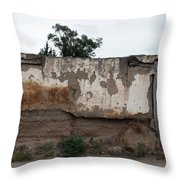 Weathered Window And Door Throw Pillow