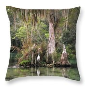 Weeki Wachee River Throw Pillow