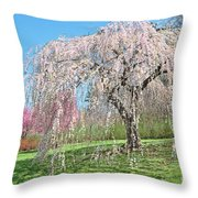Weeping Cherry Tree Throw Pillow