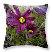 Welcome To The Garden Throw Pillow