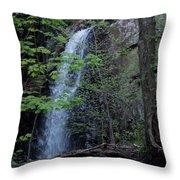 Westfield Falls Throw Pillow