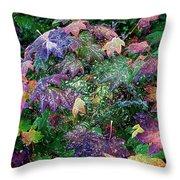 Wet Washington Autumn Fantasy 1 Throw Pillow