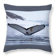 Whale Tail Throw Pillow