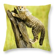 What A Cutie Throw Pillow