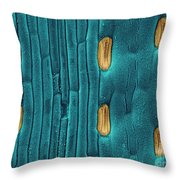 Wheat Leaf Stomata, Sem Throw Pillow