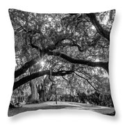 When I Dream... Throw Pillow