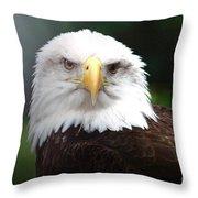 Where Eagles Dare 4 Throw Pillow