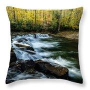 Whitaker Falls In Autumn Throw Pillow
