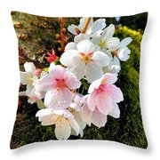 White Apple Blossom In Spring Throw Pillow