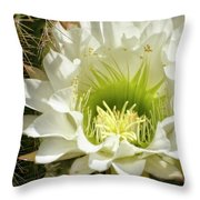 White Cactus Flower Throw Pillow