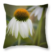 White Coneflower Throw Pillow