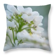 White Flower Close-up Throw Pillow