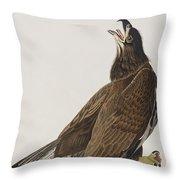 White-headed Eagle Throw Pillow