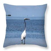 White Heron In The Keys Throw Pillow