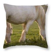 White Horses Throw Pillow
