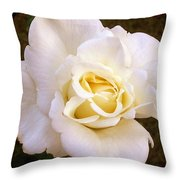 White /rose Photograph Throw Pillow