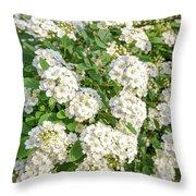 White Spiraea Flower Throw Pillow