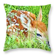 White-tailed. Virginia Deer Fawn Throw Pillow