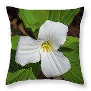 White Trillium 3 Throw Pillow