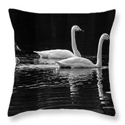 Whooper Swan Family Throw Pillow