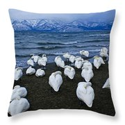 Whooper Swans In Winter Throw Pillow