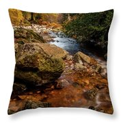 Wicklow Stream Throw Pillow