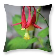 Wild Angel Throw Pillow
