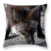 Wild Eyes Throw Pillow