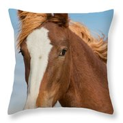 Wild Foal Throw Pillow