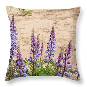 Wild Lupine Flowers Throw Pillow