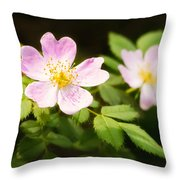Wild Pink Eglantine Throw Pillow