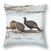 Wild Turkey - Meleagris Gallopavo Throw Pillow