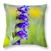 Wildflowers And Pikes Peak In The Pike National Forest Throw Pillow