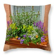 Window Box Blooms Throw Pillow