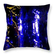 Wine Bottles 1  Throw Pillow