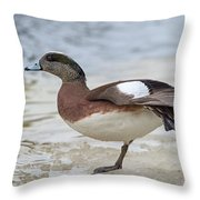 Wing Stretch.. Throw Pillow