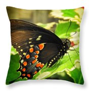 Wings Of Fancy Throw Pillow