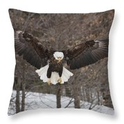 Wings Of Wonder Throw Pillow