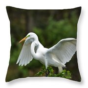 Wings Out Throw Pillow