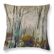 Winter Afternoon Throw Pillow