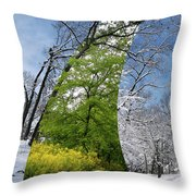 Winter And Summer Throw Pillow
