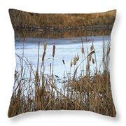Winter Cattails Throw Pillow