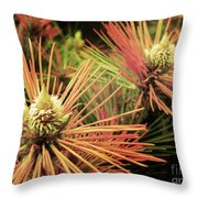 Winter Details Throw Pillow