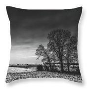 Winter Fields Throw Pillow