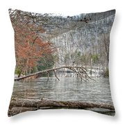 Winter Landscape At Hungry Mother State Park Throw Pillow