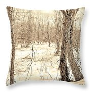 Winter Scene, Montgomery County, Pennsylvania Throw Pillow