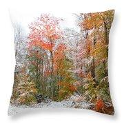 Winterfall  Throw Pillow